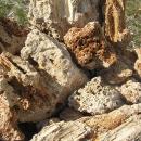 Kámen okrasný - vápenec jako travertin